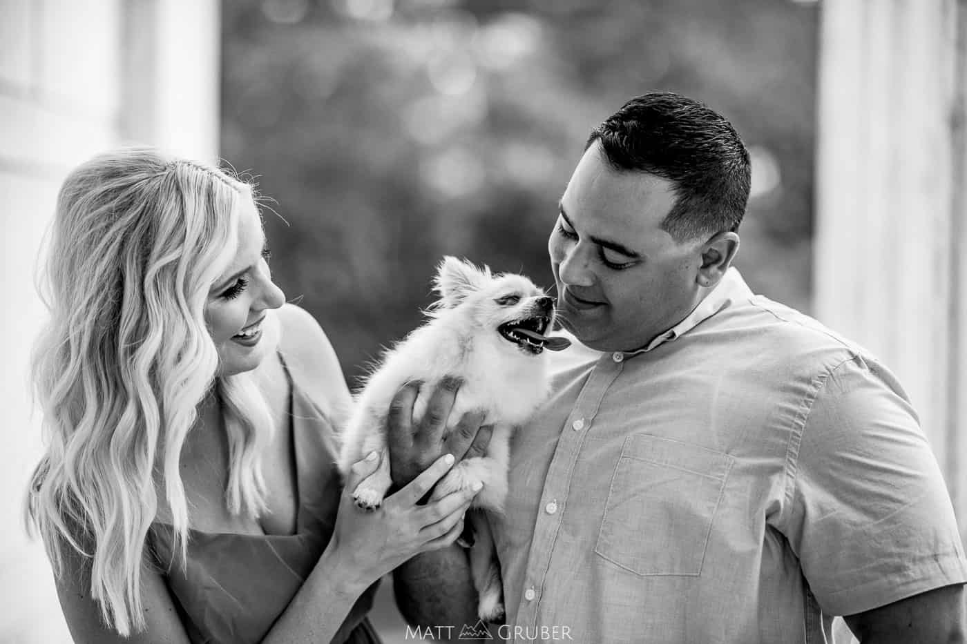 Princeton engagement photos with dogs